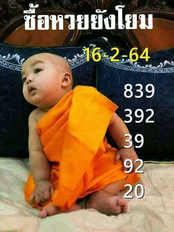 huay-little-monk