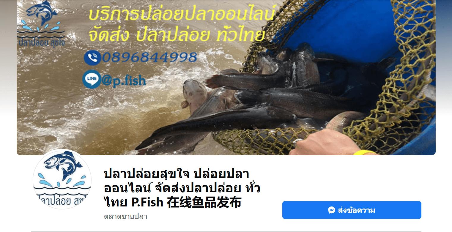 เพจปลาปล่อยสุขใจ